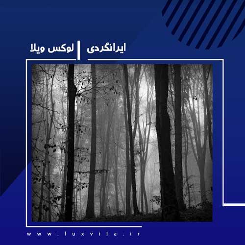 راز و رمزهای جنگل جیغ مشهد