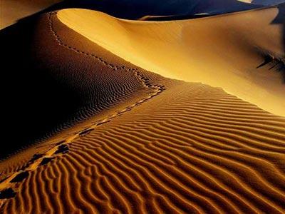 بهترین زمان سفر به کویر ، کویرگردی در کویر مصر