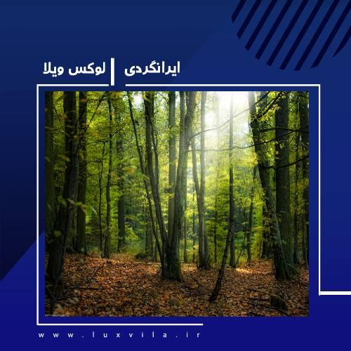 بهترین پارک جنگلی در نوشهر