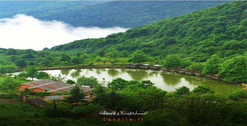 دریاچه قو جواهرده