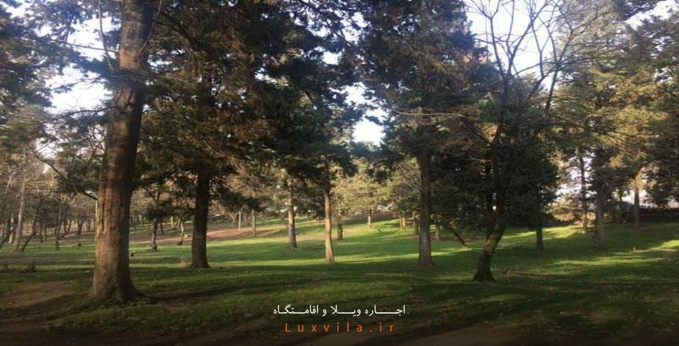 معرفی پارک جنگلی هلومسر